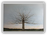 Winter Tree 13 - 72x48